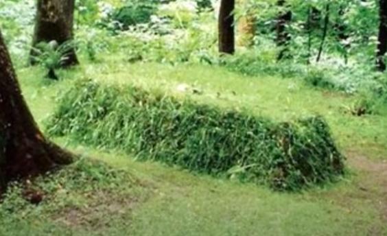 tumba tierra